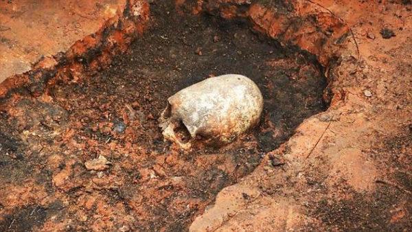 strano scheletro con testa allungata Arkaim