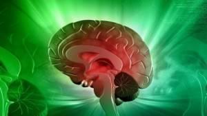 Cervello e sistema immunitario collegati dai vasi linfatici