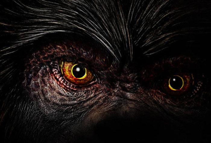 Qual'è l'animale più pericoloso al mondo? La zanzara, scopri perchè