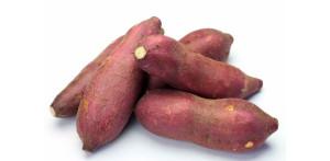 caiapo estratto dalla patata è utile pera la cura del diabete