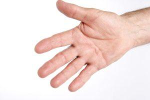 Rigenerazione arti amputati è possibile grazie a regolatori genetici