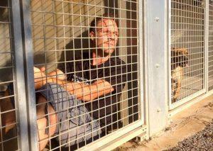 Contro l'abbandono dei cani, si fa chiudere in gabbia