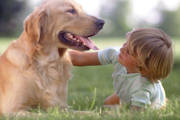 Educare un figlio con gli animali bambini