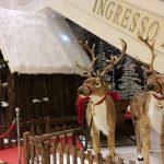 Arriva il Natale di EUROMA2 Christmas Experience per tutta la famiglia 3