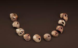 Trovate collane di conchiglie e gusci risalenti a 80.000 anni fa
