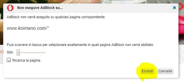 disclaimer AdBlock 2