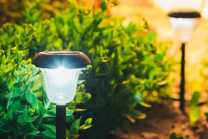 Illuminare il giardino Illuminazione esterni Illuminare il giardino: i consigli per non sbagliare