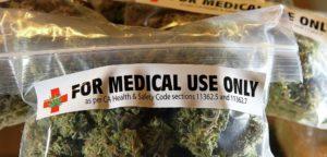 Prevenzione Alzheimer Marijuana rimuove la proteina tossica dell'Alzheimer dal cervello